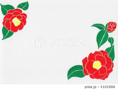 椿 花 藪椿 手描きのイラスト素材 Pixta