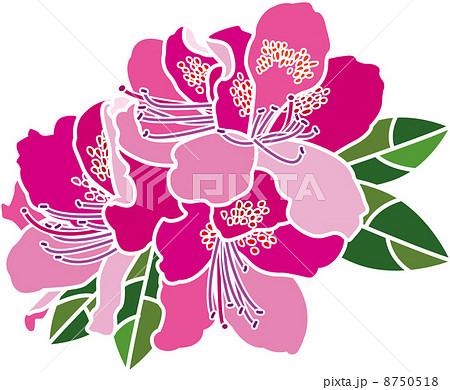 サツキ 花 イラスト 咲くのイラスト素材 Pixta