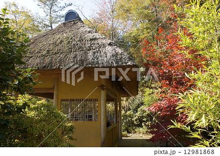 丸木造りの写真素材 - PIXTA