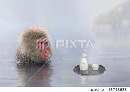 露天風呂 ニホンザル 猿 酒の写真素材 - PIXTA