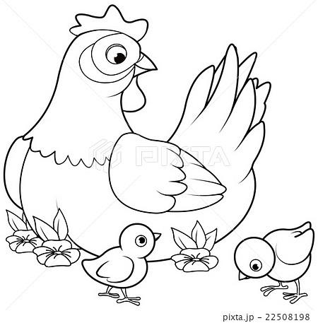 baby chick illustrations pixta