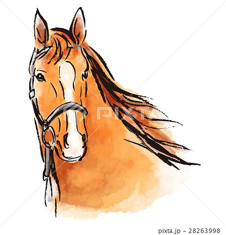 筆イラスト 馬のイラスト素材 28263998 Pixta