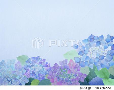 アジサイ紫陽花のイラスト素材集 Pixtaピクスタ