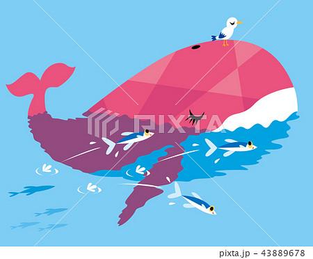 クジラ鯨のイラスト素材集 Pixtaピクスタ