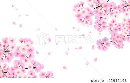 花 桜 イラスト リアルのイラスト素材 Pixta
